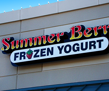 Summer Berry Frozen Yogurt